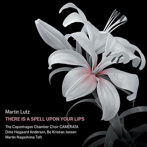Martin Lutz: There Is a Spell upon Your Lips by Various Artists
