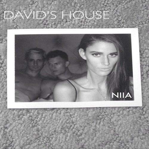 Davids House de Niia