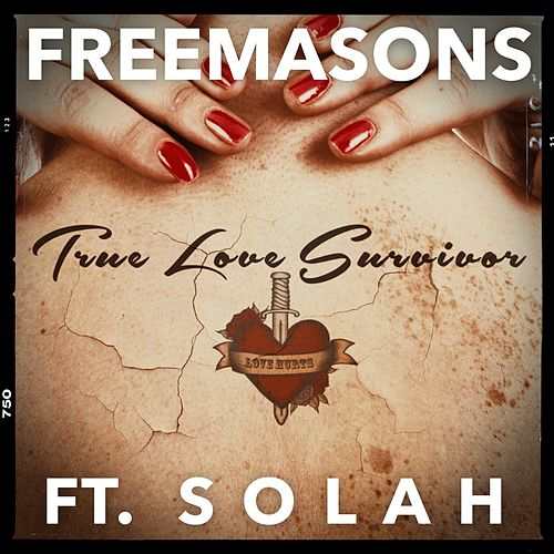 True Love Survivor (Remixes) de The Freemasons