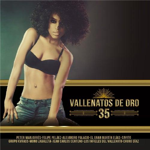 Vallenatos de Oro, Vol. 35 de Various Artists