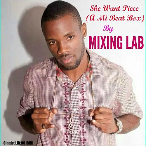 She Want Piece (A Mi Beat Box) by Mixing Lab