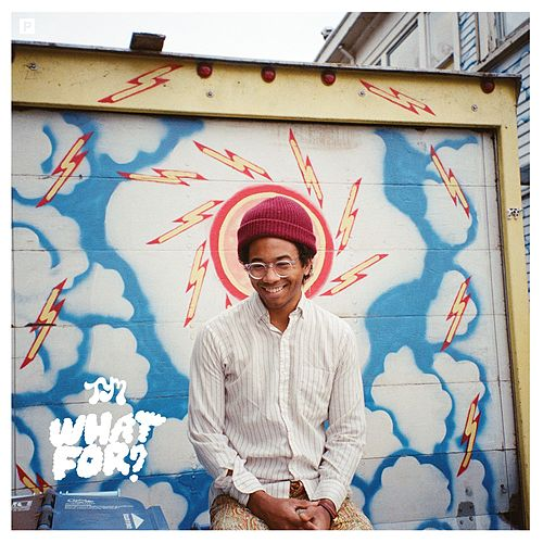 What For? by Toro Y Moi