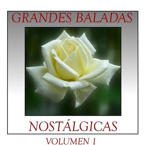 Grandes Baladas Nostálgicas Volumen 1 de Various Artists
