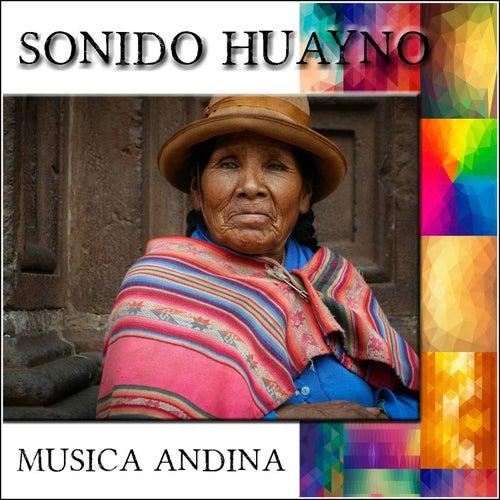 Sonido Huayno - Musica Andina de Charangos de fuego