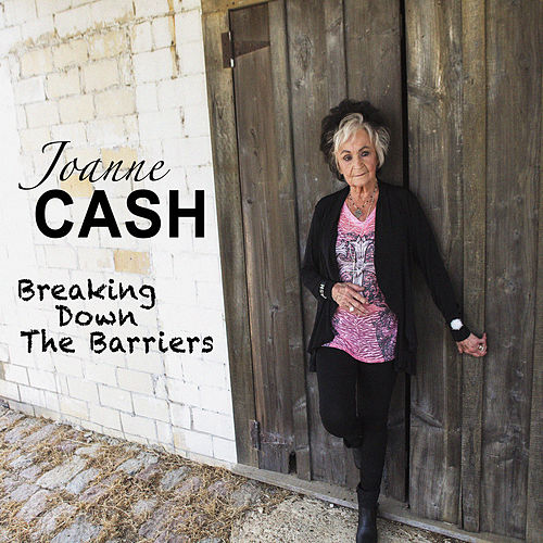 Breaking Down the Barriers von Joanne Cash