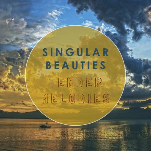 Tender Melodies by Singular Beauties