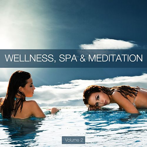 Wellness, Spa & Meditation, Vol. 2 de Various Artists