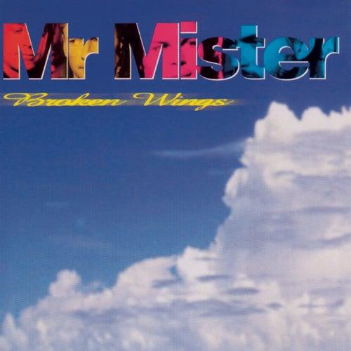Broken Wings by Mr. Mister