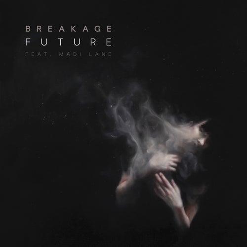 Future von Breakage