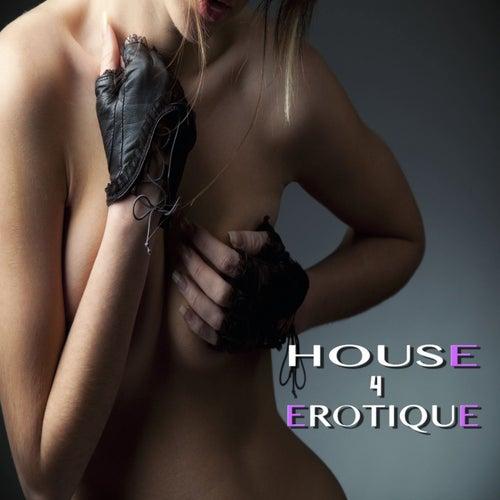 House Erotique, 4 de Various Artists