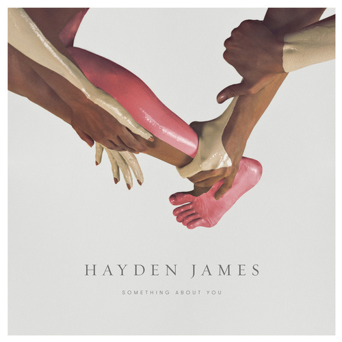 Something About You de Hayden James