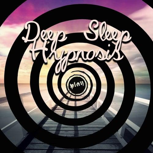 Sleep Journey (Sound of Silence) by Deep Sleep Hypnosis Masters