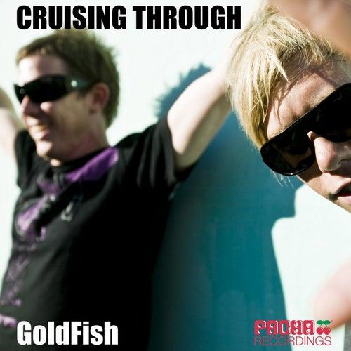 Cruising Through von Goldfish