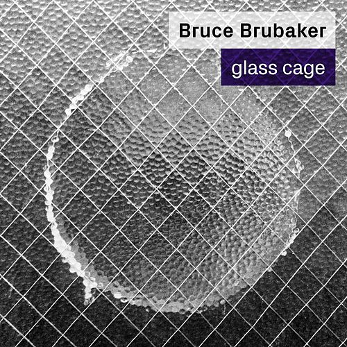 Glass Cage by Bruce Brubaker