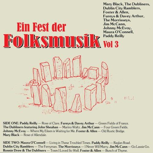 Ein Fest der Folksmusik, Vol. 3 de Various Artists