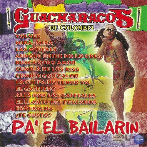 Pa' el Bailarín de Los Guacharacos de Colombia (1)