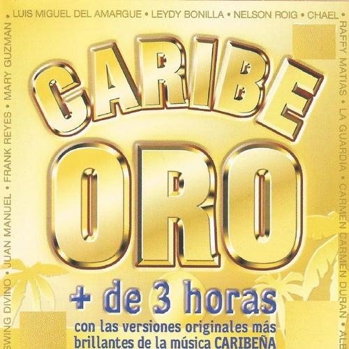 Caribe Oro de Various Artists