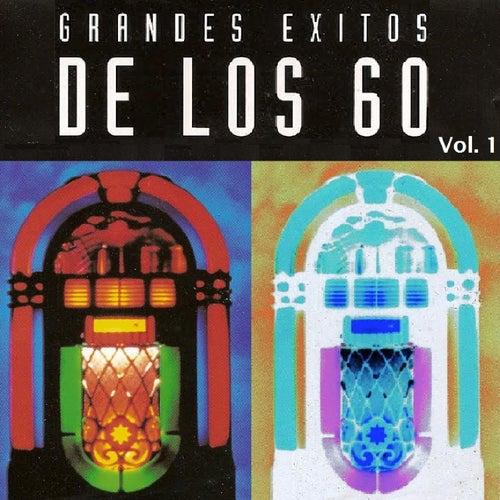 Grandes Éxitos de los 60, Vol. 1 by Various Artists
