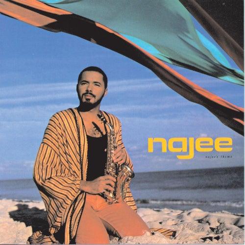 Najee's Theme de Najee