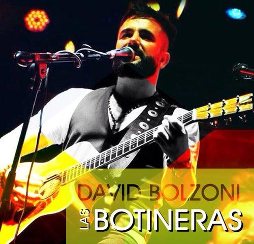 Botineras (Single) de David Bolzoni
