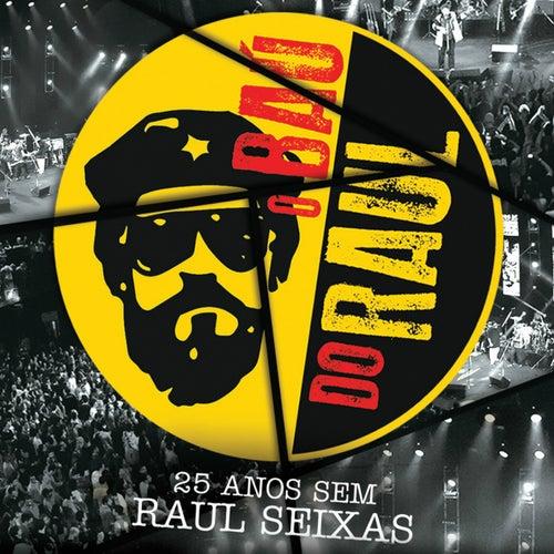 O Baú do Raul - 25 Anos Sem Raul Seixas by Various Artists