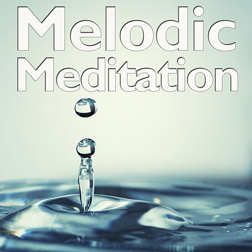 Melodic Meditation de Various Artists