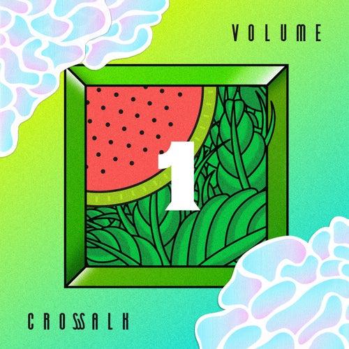 Crosswalk, Vol. 1 von Various Artists