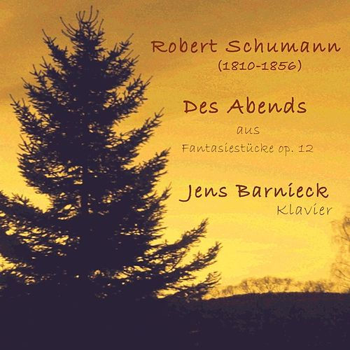 Robert Schumann: Fantasiestücke, Op. 12: I. Des Abends von Jens Barnieck