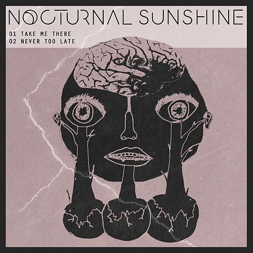 Take Me There de Nocturnal Sunshine
