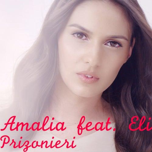 Prizonieri de Amalia