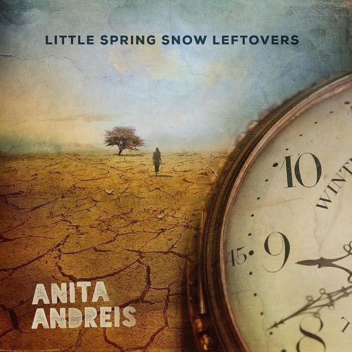 Little Spring Snow Leftovers by Anita Andreis