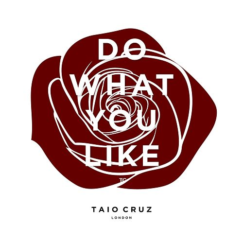 Do What You Like by Taio Cruz