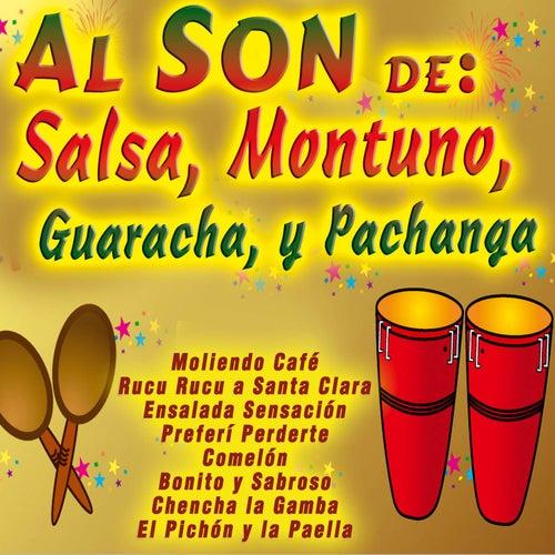 Al Son De: Salsa, Son, Bolero, Guaracha, Y Pachanga de Various Artists