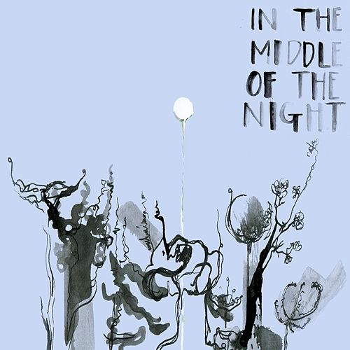 In the Middle of the Night de Chloe Foy