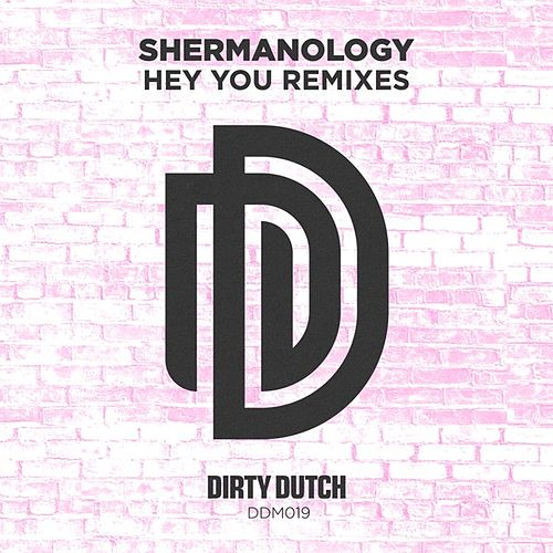 Hey You (Remixes) von Shermanology