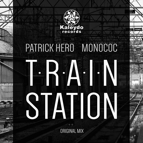 Train Station by Patrick Hero