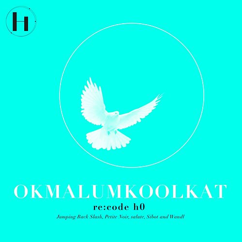 Re:code H0 by Okmalumkoolkat