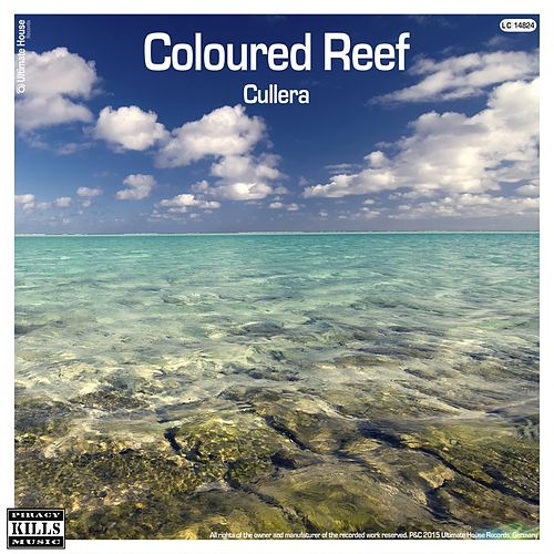 Coloured Reef von Cullera
