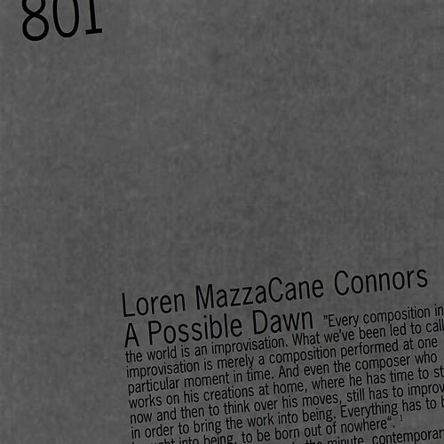 A Possible Dawn by Loren MazzaCane Connors