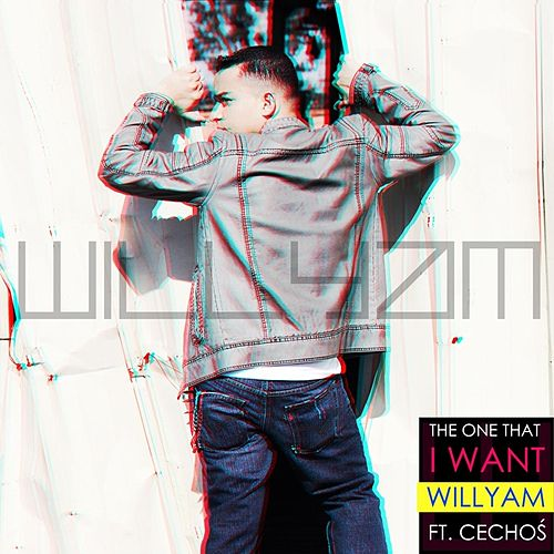 The One That I Want  (feat. Cechoś) von Willyam