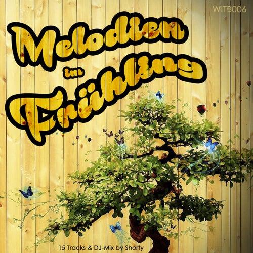 Melodien im Frühling von Various Artists