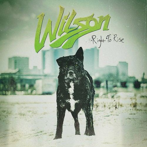 Right To Rise de Wilson