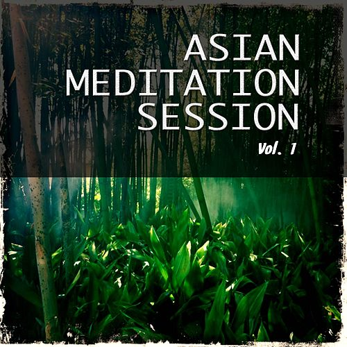 Asian Meditation Session, Vol. 1 (Best Asian Inspired Chill out and Meditation Music) by Various Artists