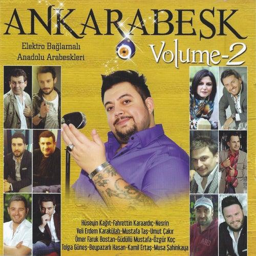Ankarabesk, Vol. 2 von Various Artists