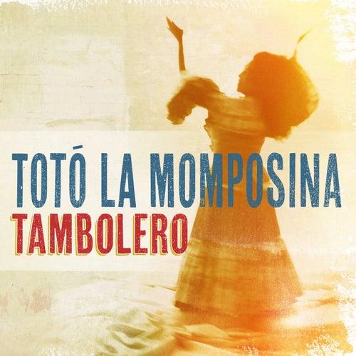 Tambolero de Toto La Momposina