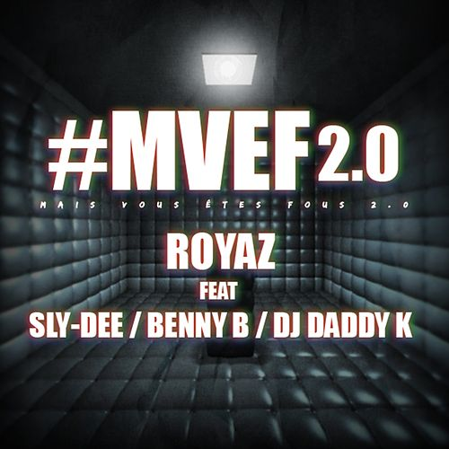 Mais vous êtes fous (#mvef 2.0) de Royaz