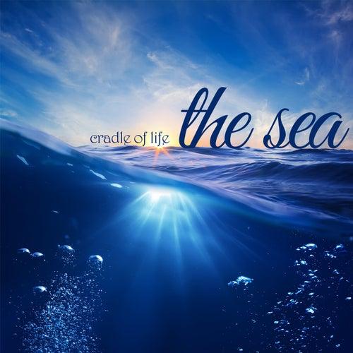 Cradle of Life - The Sea de Meditation Spa