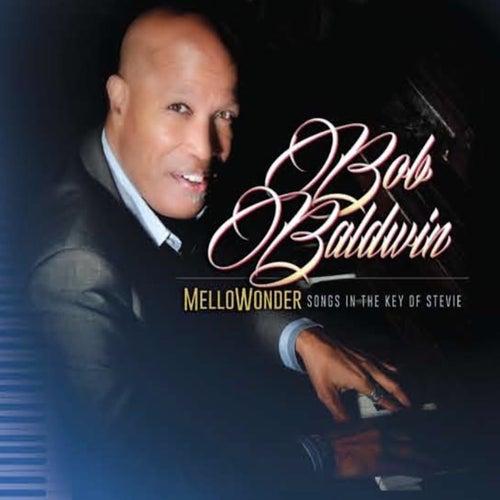 Mellowonder/Songs in the Key of Stevie de Bob Baldwin
