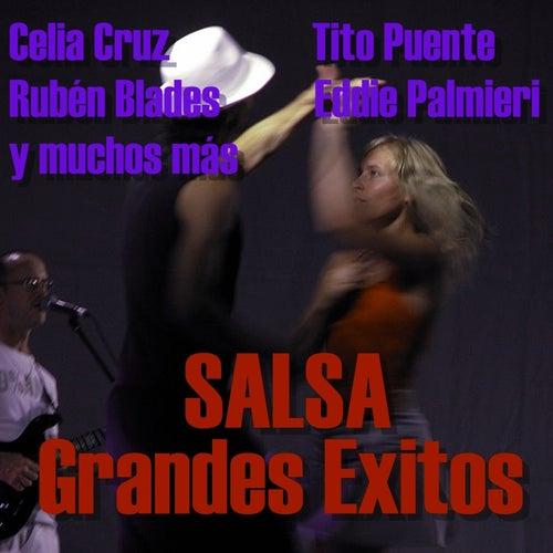 Salsa Grandes Éxitos de Various Artists