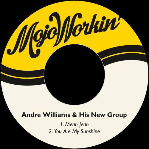 Mean Jean de Andre Williams